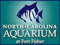 North Carolina Aquarium at Fort Fisher Wilmington Attractions