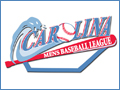 Carolina Men's Baseball League Wilmington Sports, Fitness and Parks